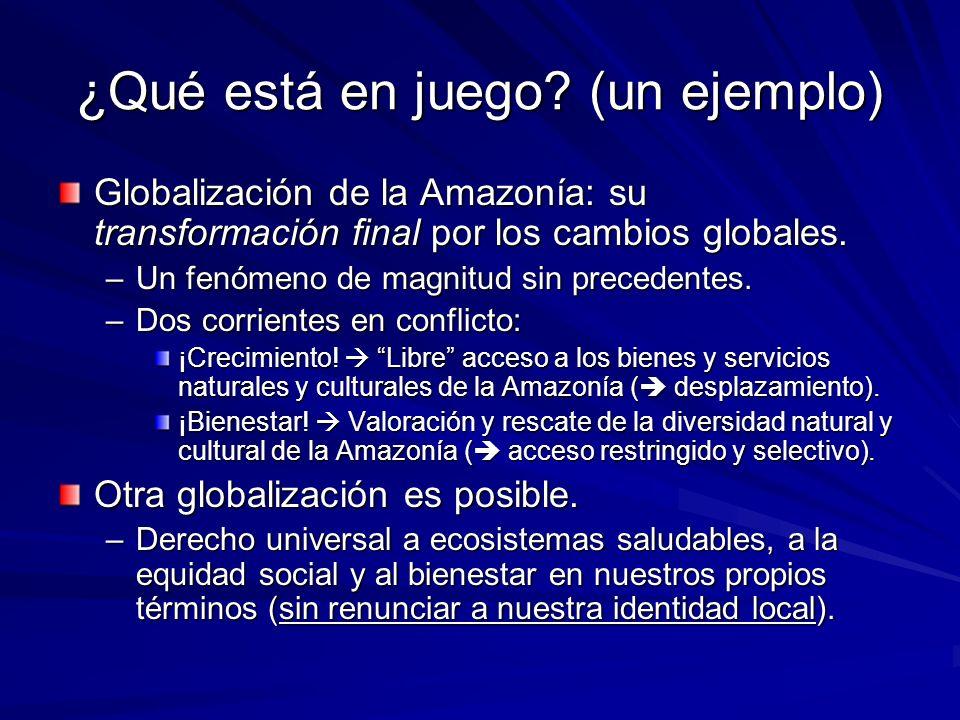 ¿Qué está en juego? (un ejemplo) Globalización de la Amazonía: su transformación final por los cambios globales. –Un fenómeno de magnitud sin preceden