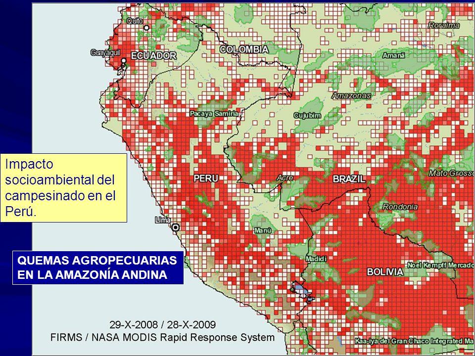 QUEMAS AGROPECUARIAS EN LA AMAZONÍA ANDINA Impacto socioambiental del campesinado en el Perú.