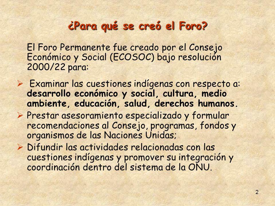 2 ¿Para qué se creó el Foro? El Foro Permanente fue creado por el Consejo Económico y Social (ECOSOC) bajo resolución 2000/22 para: Examinar las cuest