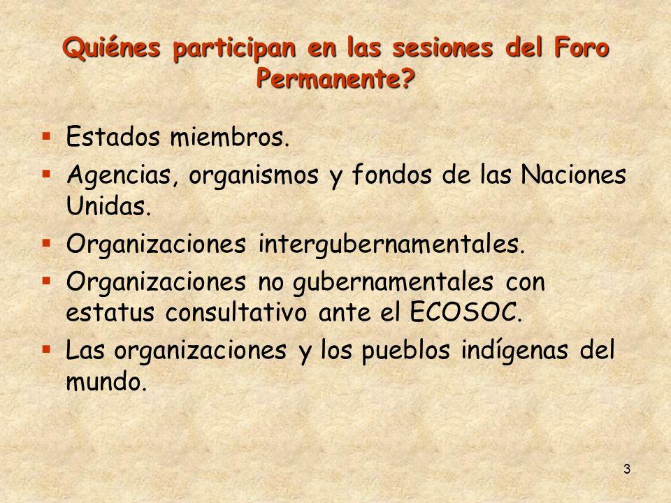 3 Quiénes participan en las sesiones del Foro Permanente? Estados miembros. Agencias, organismos y fondos de las Naciones Unidas. Organizaciones inter