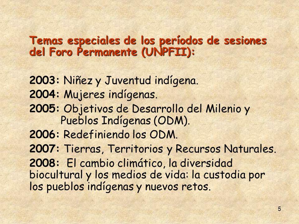 5 Temas especiales de los períodos de sesiones del Foro Permanente (UNPFII): 2003: Niñez y Juventud indígena. 2004: Mujeres indígenas. 2005: Objetivos
