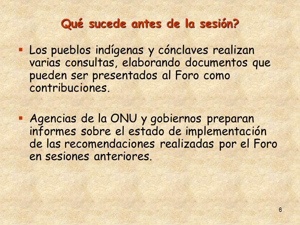 6 Qué sucede antes de la sesión? Los pueblos indígenas y cónclaves realizan varias consultas, elaborando documentos que pueden ser presentados al Foro
