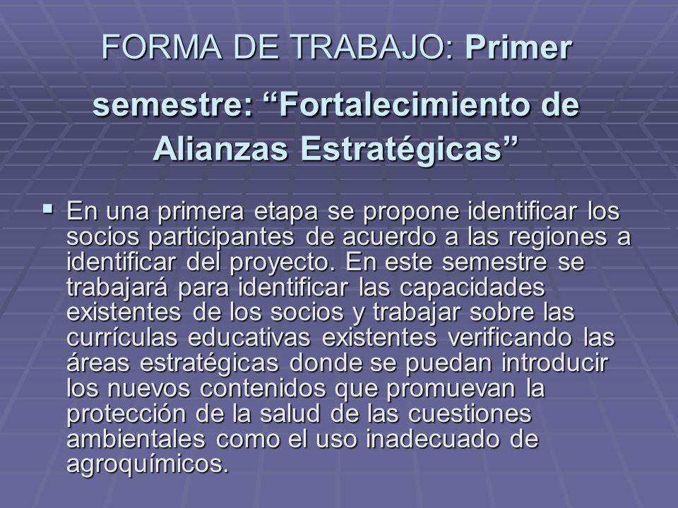 FORMA DE TRABAJO: Primer semestre: Fortalecimiento de Alianzas Estratégicas En una primera etapa se propone identificar los socios participantes de ac