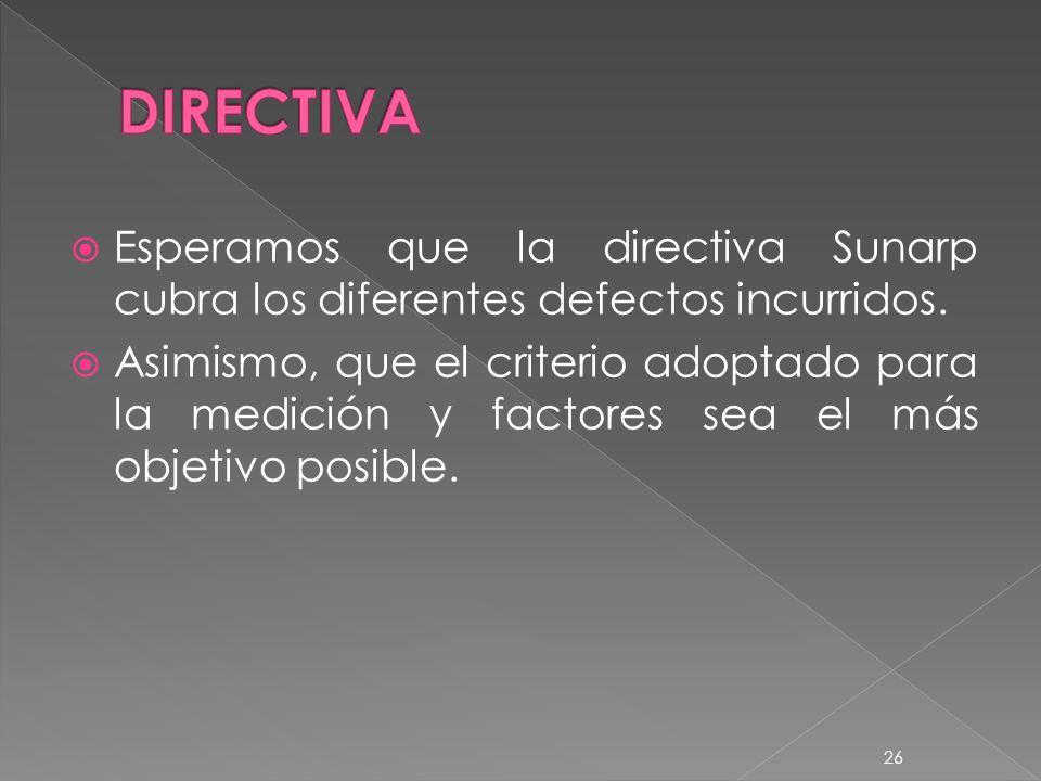 Esperamos que la directiva Sunarp cubra los diferentes defectos incurridos.