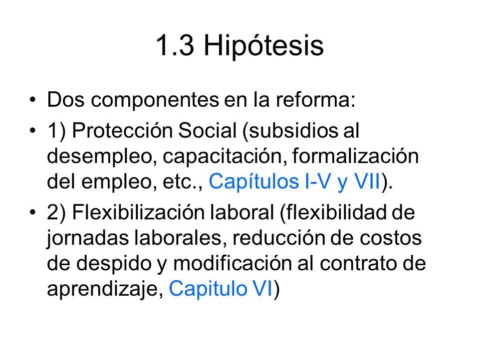 1.3 Hipótesis Dos componentes en la reforma: 1) Protección Social (subsidios al desempleo, capacitación, formalización del empleo, etc., Capítulos I-V y VII).