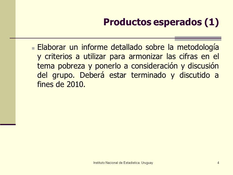 Instituto Nacional de Estadistica. Uruguay4 Productos esperados (1) Elaborar un informe detallado sobre la metodología y criterios a utilizar para arm