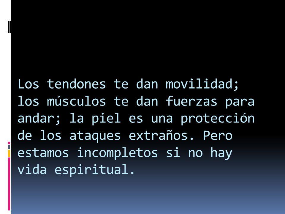 Los tendones te dan movilidad; los músculos te dan fuerzas para andar; la piel es una protección de los ataques extraños. Pero estamos incompletos si