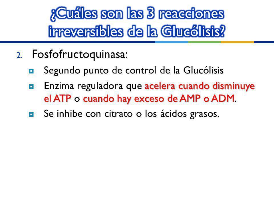 2. Fosfofructoquinasa: Segundo punto de control de la Glucólisis acelera cuando disminuye el ATPcuando hay exceso de AMP o ADM Enzima reguladora que a