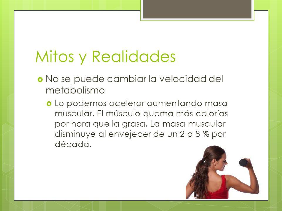 Mitos y Realidades No se puede cambiar la velocidad del metabolismo Lo podemos acelerar aumentando masa muscular. El músculo quema más calorías por ho