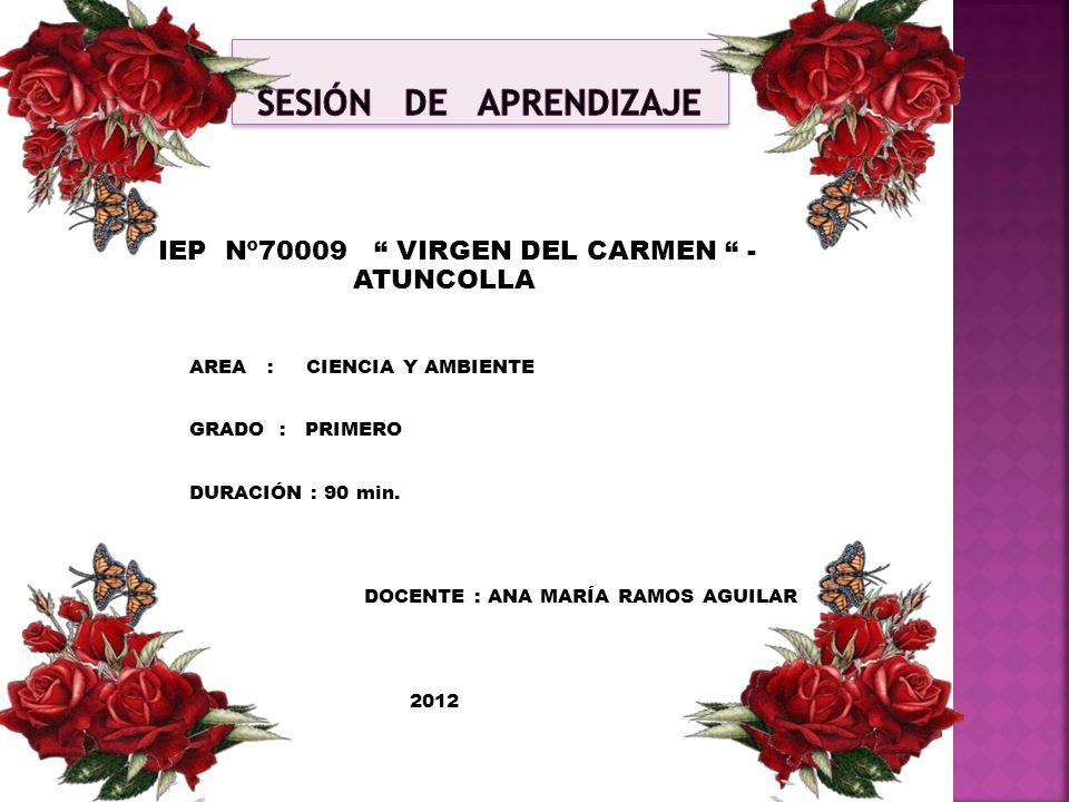 IEP Nº70009 VIRGEN DEL CARMEN - ATUNCOLLA AREA : CIENCIA Y AMBIENTE GRADO : PRIMERO DURACIÓN : 90 min. DOCENTE : ANA MARÍA RAMOS AGUILAR 2012