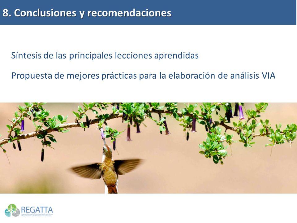 8. Conclusiones y recomendaciones Síntesis de las principales lecciones aprendidas Propuesta de mejores prácticas para la elaboración de análisis VIA