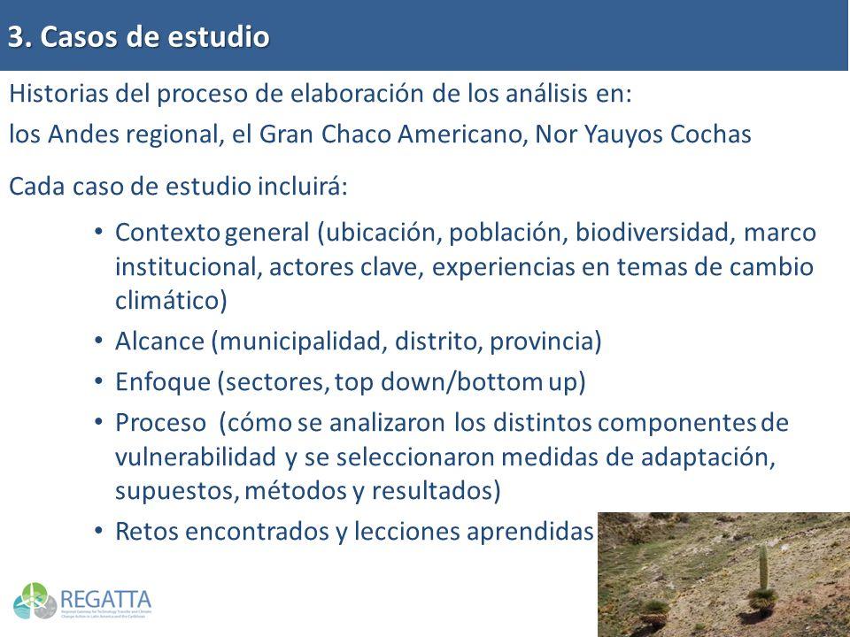 3. Casos de estudio Historias del proceso de elaboración de los análisis en: los Andes regional, el Gran Chaco Americano, Nor Yauyos Cochas Cada caso