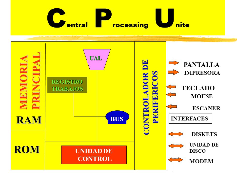 C entral P rocessing U niteMEMORIAPRINCIPAL REGISTRO TRABAJOS UNIDAD DE CONTROL BUS UAL RAM ROM CONTROLADOR DE PERIFERICOS PANTALLA IMPRESORA TECLADO INTERFACES DISKETS UNIDAD DE DISCO MODEM ESCANER MOUSE