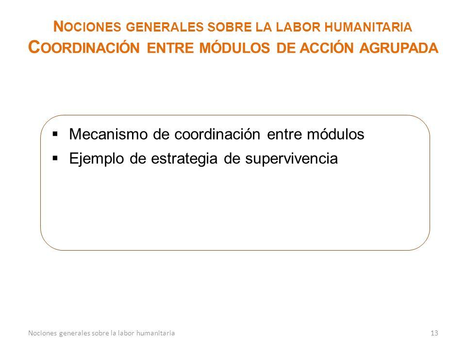 13 N OCIONES GENERALES SOBRE LA LABOR HUMANITARIA C OORDINACIÓN ENTRE MÓDULOS DE ACCIÓN AGRUPADA Mecanismo de coordinación entre módulos Ejemplo de estrategia de supervivencia Nociones generales sobre la labor humanitaria