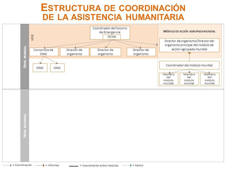 E STRUCTURA DE COORDINACIÓN DE LA ASISTENCIA HUMANITARIA = Coordinación N IVEL NACIONAL = Informes= Apoyo = Coordinación entre módulos N IVEL MUNDIAL