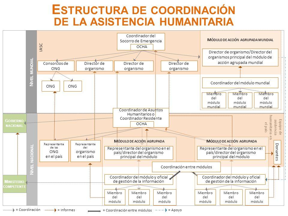 = Coordinación G OBIERNO NACIONAL Line Ministry M INISTERIO COMPETENTE N IVEL NACIONAL Equipo de asistencia humanitaria en el país = Informes= Apoyo =