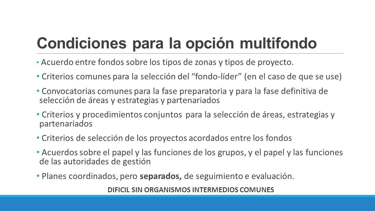 Condiciones para la opción multifondo Acuerdo entre fondos sobre los tipos de zonas y tipos de proyecto. Criterios comunes para la selección del fondo