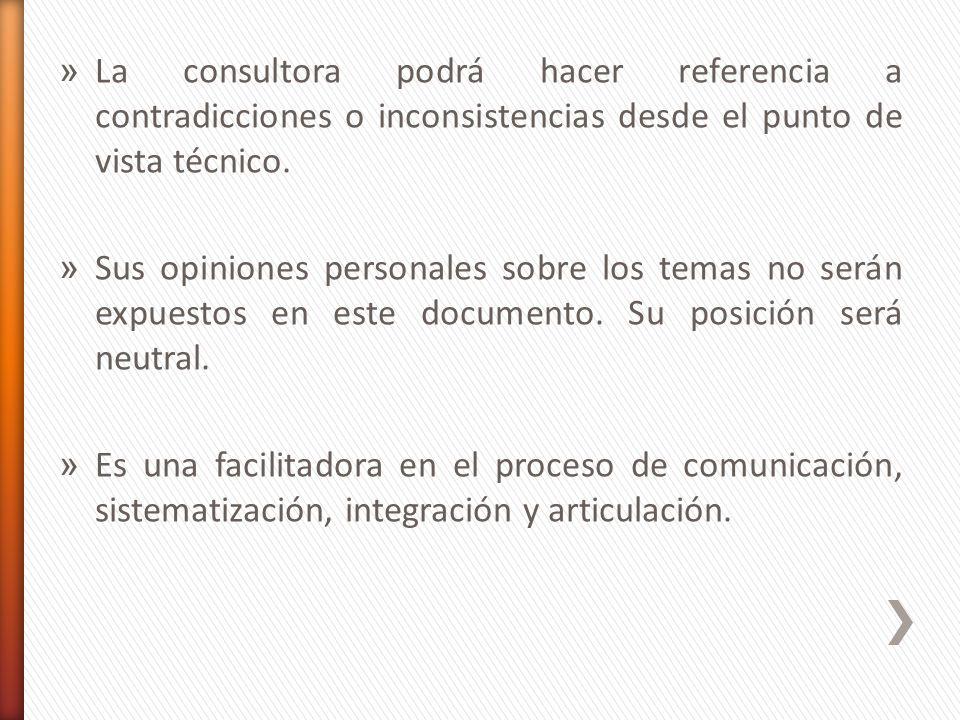 » La consultora podrá hacer referencia a contradicciones o inconsistencias desde el punto de vista técnico. » Sus opiniones personales sobre los temas