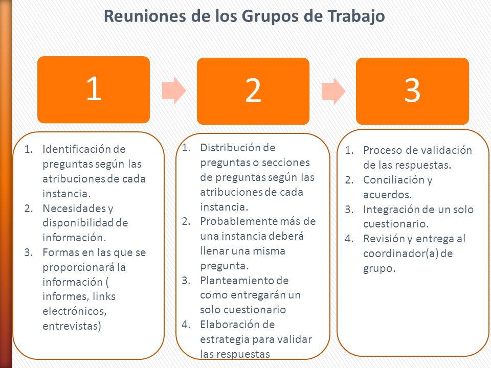123 Reuniones de los Grupos de Trabajo 1.Identificación de preguntas según las atribuciones de cada instancia. 2.Necesidades y disponibilidad de infor