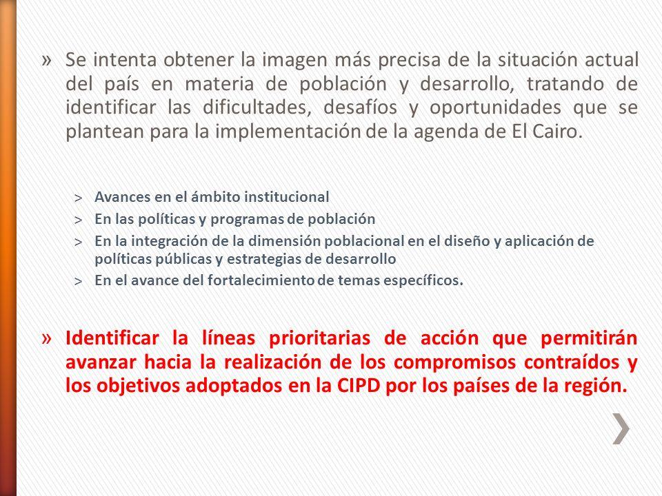 Papel del consultor: articulación e integración de los insumos