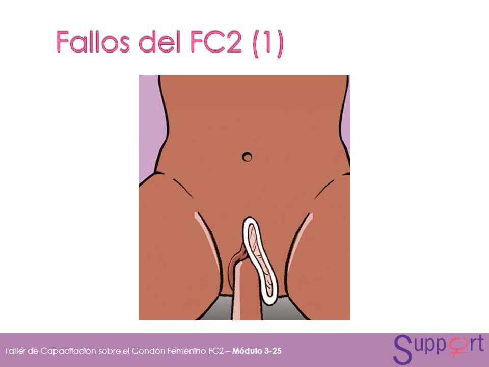 Taller de Capacitación sobre el Condón Femenino FC2 – Módulo 3-25