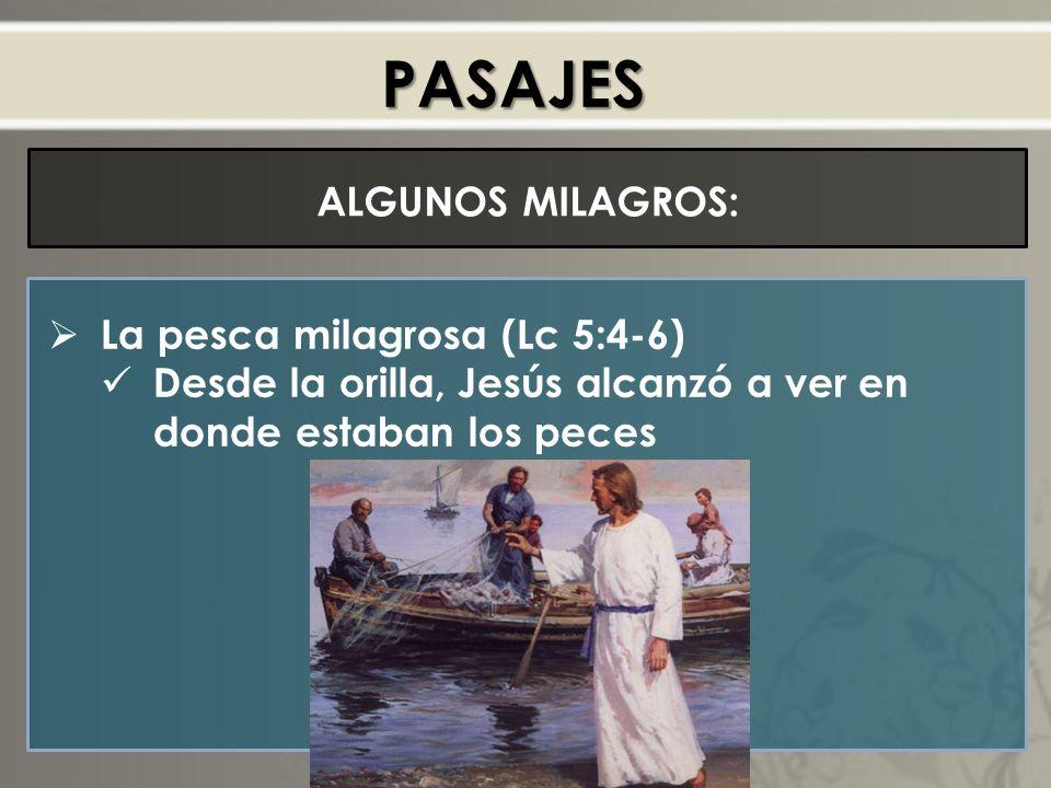 PASAJES ALGUNOS MILAGROS: La pesca milagrosa (Lc 5:4-6) Desde la orilla, Jesús alcanzó a ver en donde estaban los peces