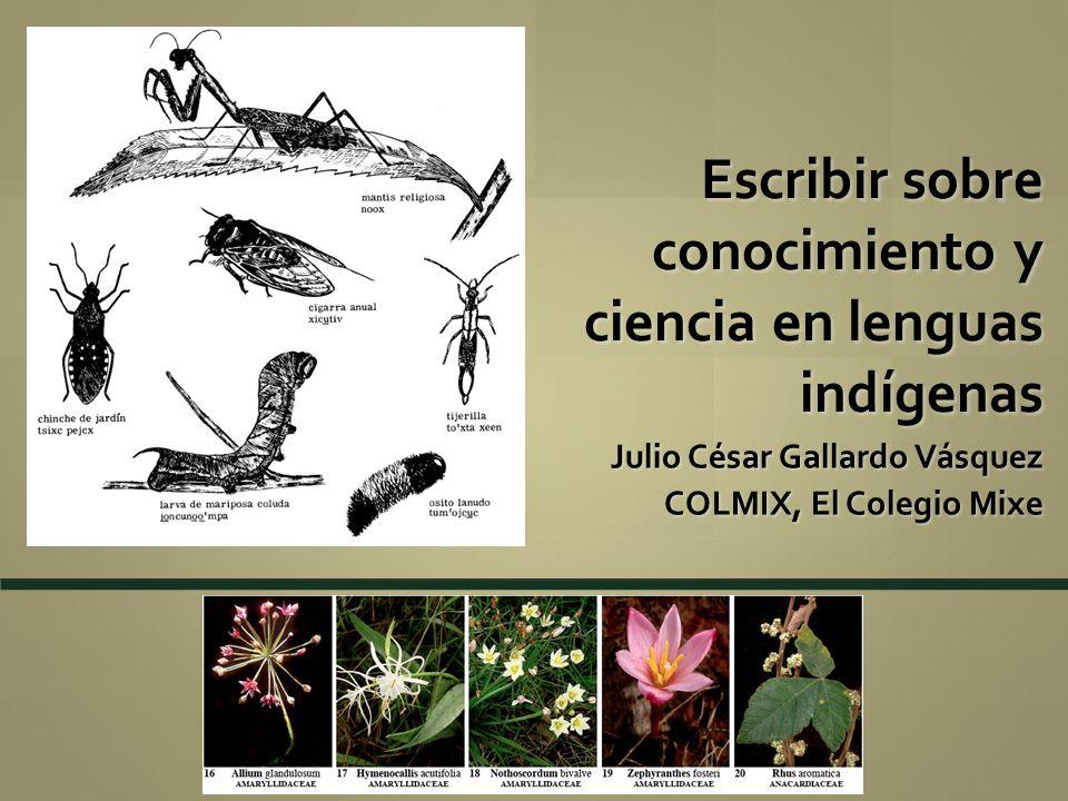 Escribir sobre conocimiento y ciencia en lenguas indígenas Julio César Gallardo Vásquez COLMIX, El Colegio Mixe