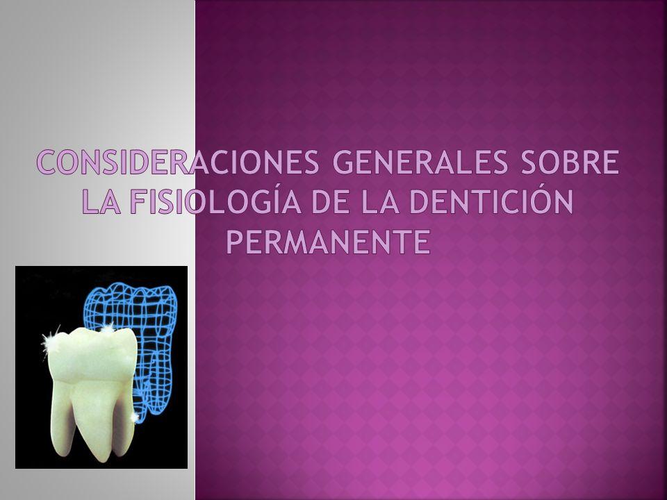 Se denomina dentición permanente, a los dientes secundarios, segunda dentición o dentición secundaria a los dientes que se forman después de la dentición decidua o dientes de leche