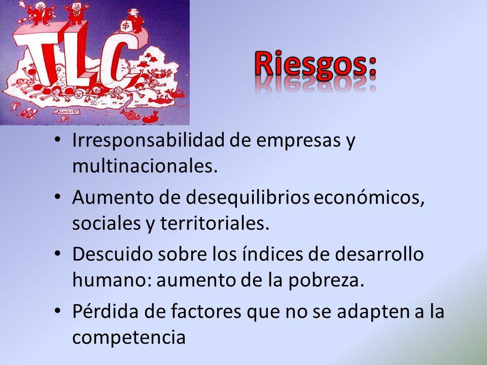 Irresponsabilidad de empresas y multinacionales. Aumento de desequilibrios económicos, sociales y territoriales. Descuido sobre los índices de desarro