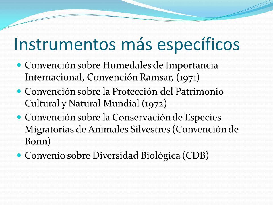 Instrumentos más específicos Convención sobre Humedales de Importancia Internacional, Convención Ramsar, (1971) Convención sobre la Protección del Pat