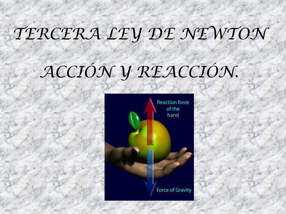 Newton al darse cuenta que las fuerzas siempre aparecen como resultado de la interacción de dos cuerpos.
