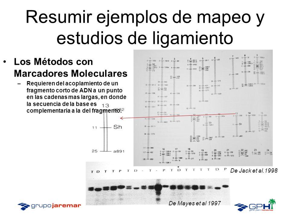 Los Métodos con Marcadores Moleculares –Requieren del acoplamiento de un fragmento corto de ADN a un punto en las cadenas mas largas, en donde la secuencia de la base es complementaria a la del fragmento.