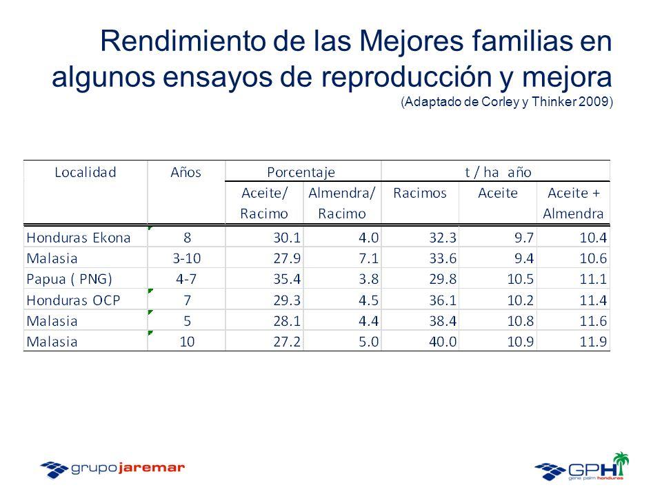 Rendimiento de las Mejores familias en algunos ensayos de reproducción y mejora (Adaptado de Corley y Thinker 2009)
