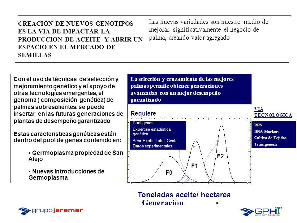 MÉTODOS DE SELECCIÓN DE PROGENITORES DURA X PISIFERA: La identificación padres Dura y Pisifera capaces de transmitir a sus descendencias tenera, altos rendimientos de aceite y almendras por hectárea implica tres etapas : 1-Selección Fenotípica, 2- Habilidad Combinatoria General (GCA) 3- Habilidad Combinatoria Especifica (SCA) Incrementar los componentes del rendimiento de racimos, aceite y almendras Características Primarias de selección.