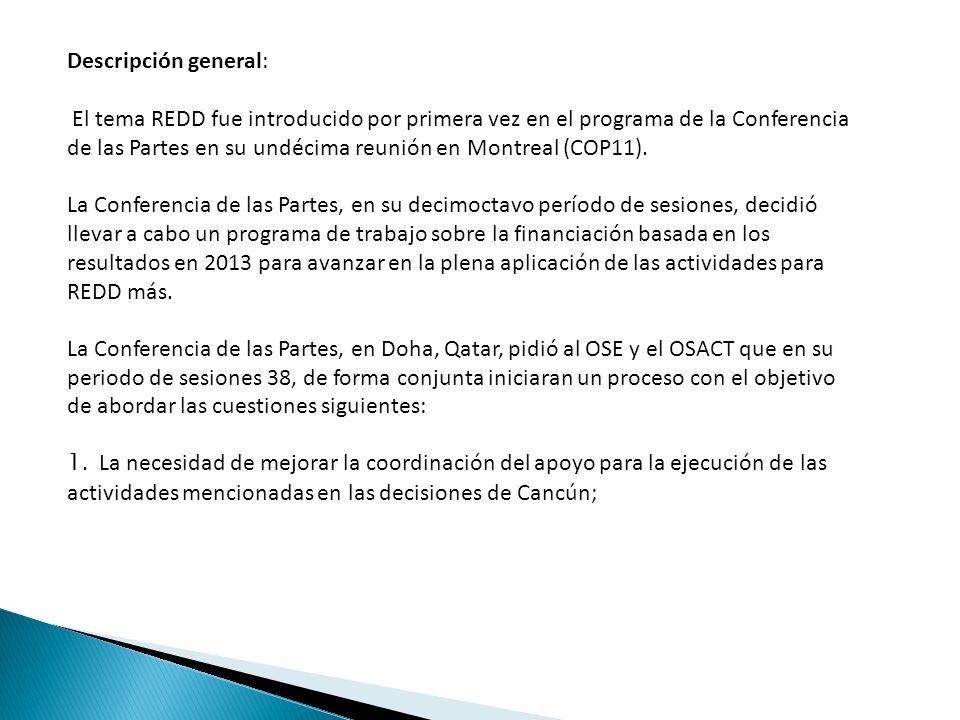 Descripción general: El tema REDD fue introducido por primera vez en el programa de la Conferencia de las Partes en su undécima reunión en Montreal (COP11).