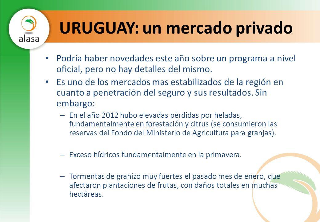 CHILE: un mercado mixto El mercado de seguros agrícolas chileno tiene vasta experiencia en la cooperación mixta (pública/privada) en estos programas, sin embargo no logra que nuevas compañias se inserten en el mismo.