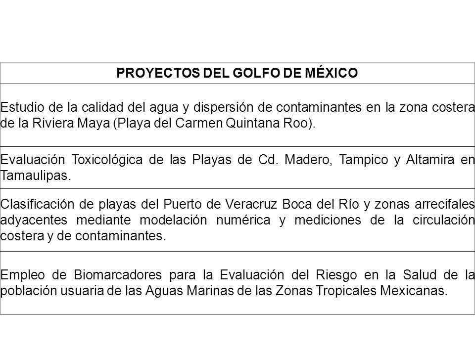 PROYECTOS DEL GOLFO DE MÉXICO Estudio de la calidad del agua y dispersión de contaminantes en la zona costera de la Riviera Maya (Playa del Carmen Qui