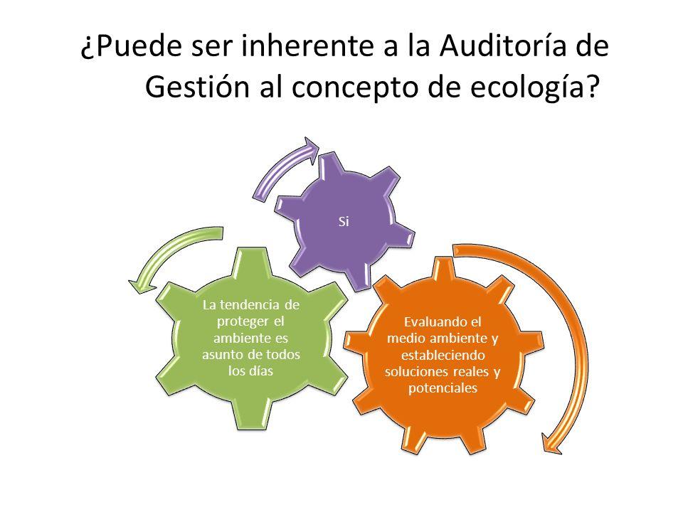 ¿Puede ser inherente a la Auditoría de Gestión al concepto de ecología? Evaluando el medio ambiente y estableciendo soluciones reales y potenciales La