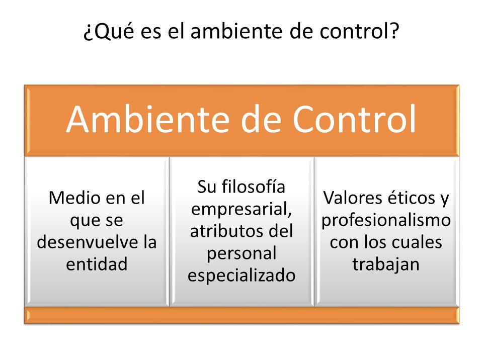 ¿Qué es el ambiente de control? Ambiente de Control Medio en el que se desenvuelve la entidad Su filosofía empresarial, atributos del personal especia