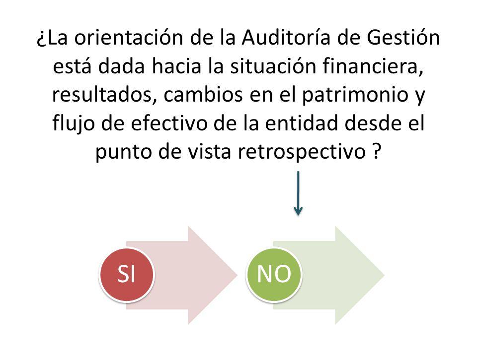 ¿La orientación de la Auditoría de Gestión está dada hacia la situación financiera, resultados, cambios en el patrimonio y flujo de efectivo de la ent