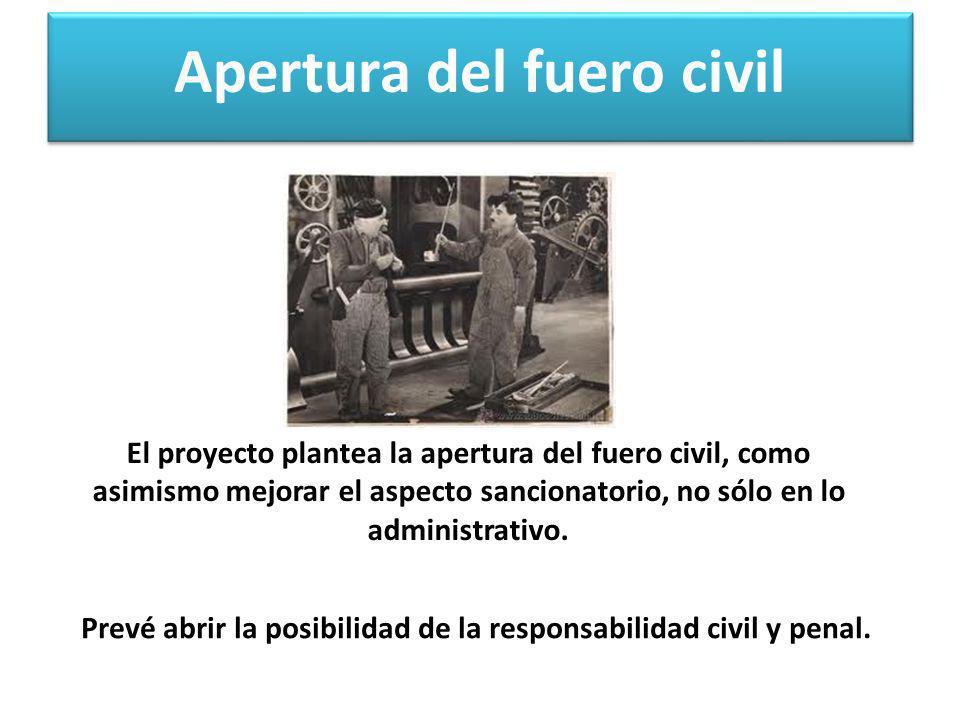 Apertura del fuero civil Prevé abrir la posibilidad de la responsabilidad civil y penal. El proyecto plantea la apertura del fuero civil, como asimism