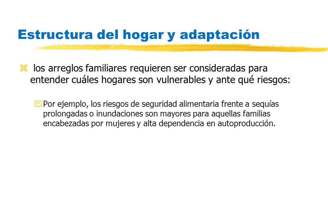 Estructura del hogar y adaptación z los arreglos familiares requieren ser consideradas para entender cuáles hogares son vulnerables y ante qué riesgos