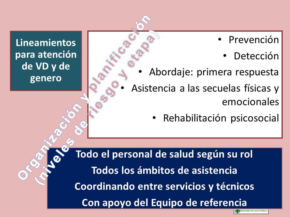 Prevención Detección Abordaje: primera respuesta Asistencia a las secuelas físicas y emocionales Rehabilitación psicosocial Lineamientos para atención