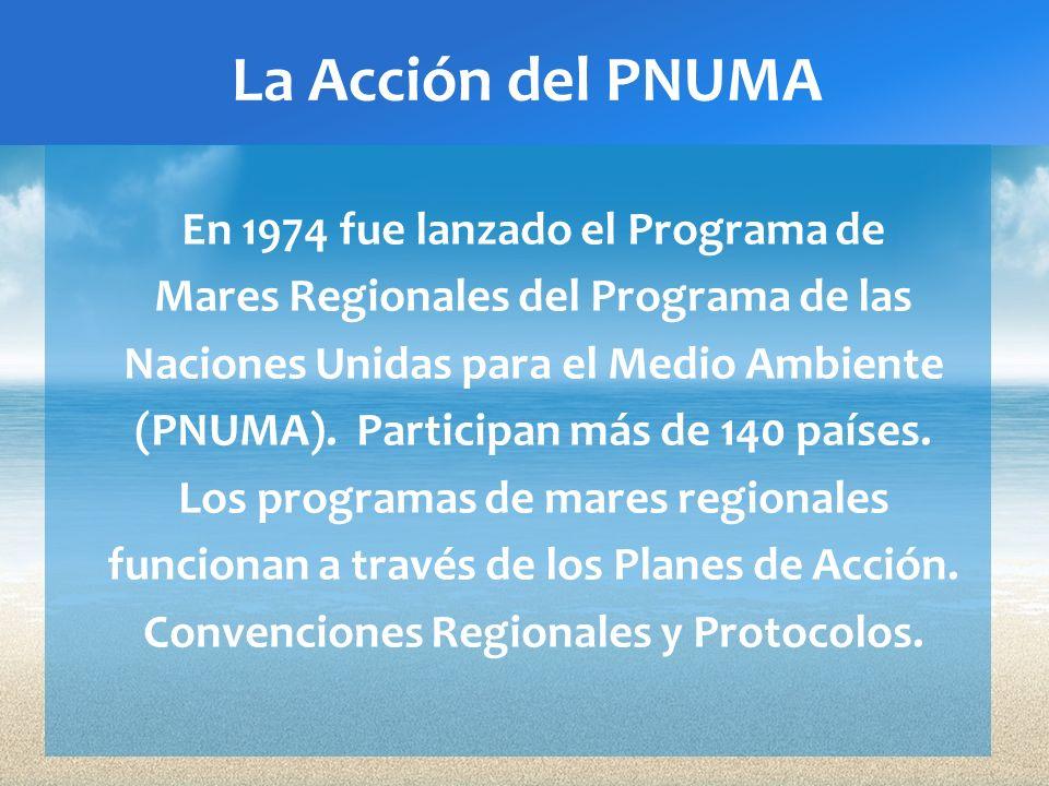 La Acción del PNUMA En 1974 fue lanzado el Programa de Mares Regionales del Programa de las Naciones Unidas para el Medio Ambiente (PNUMA). Participan