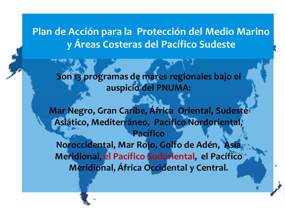 Plan de Acción para la Protección del Medio Marino y Áreas Costeras del Pacífico Sudeste Son 13 programas de mares regionales bajo el auspicio del PNU