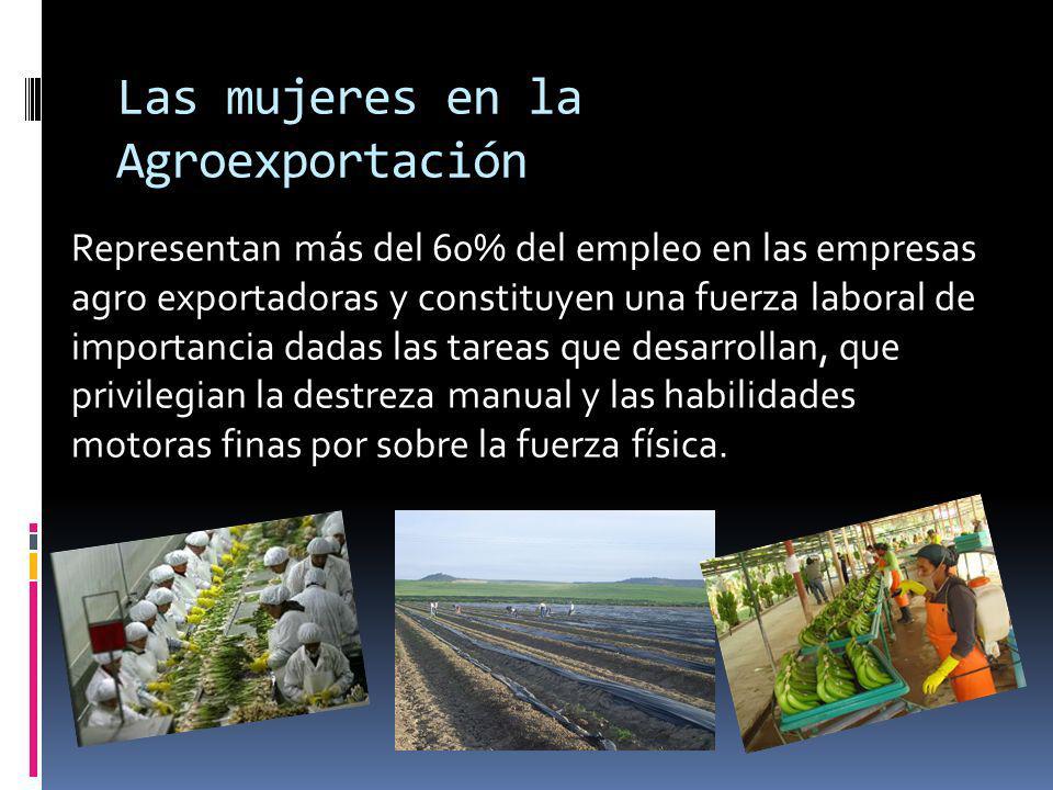 Las mujeres en la Agroexportación Representan más del 60% del empleo en las empresas agro exportadoras y constituyen una fuerza laboral de importancia dadas las tareas que desarrollan, que privilegian la destreza manual y las habilidades motoras finas por sobre la fuerza física.