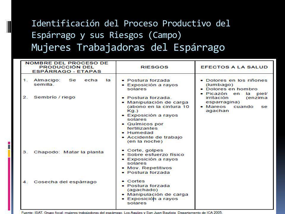 Identificación del Proceso Productivo del Espárrago y sus Riesgos (Campo) Mujeres Trabajadoras del Espárrago