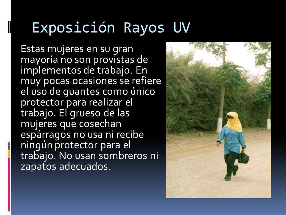 Exposición Rayos UV Estas mujeres en su gran mayoría no son provistas de implementos de trabajo.