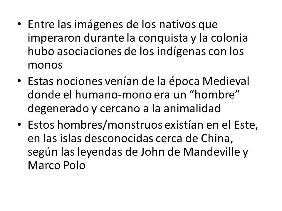 Entre las imágenes de los nativos que imperaron durante la conquista y la colonia hubo asociaciones de los indígenas con los monos Estas nociones vení