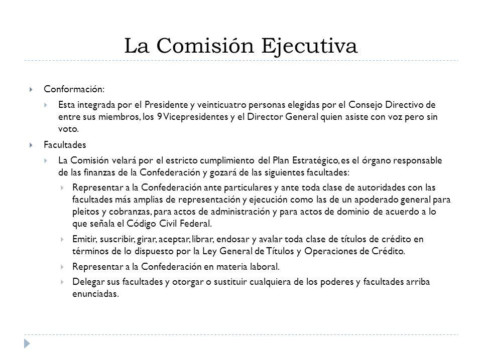 Conformación: Esta integrada por el Presidente y veinticuatro personas elegidas por el Consejo Directivo de entre sus miembros, los 9 Vicepresidentes